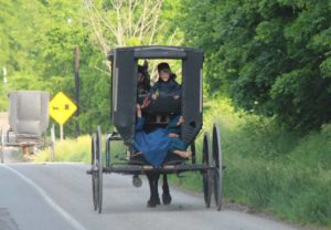 amish-girls-riding-in-buggy-free-use-copy
